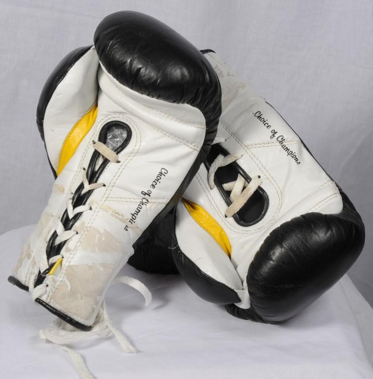 SHOF15-Memorabilia_BoxingGloves (Medium)